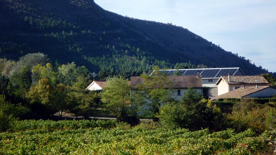 Panneaux solaires sur une maison entourée de verdure